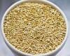 quinoa-o-grao-de-ouro